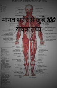 मानव शरीर से जुड़े 100 रोचक तथ्य | Amazing Facts the Human Body